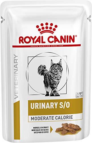 Royal Canin feline Diet Urinary S/o moderate calorie gatto cibo umido 48 x 85GR