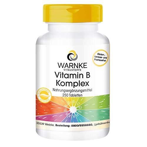 Vitamin B Komplex hochdosiert - enthält alle B-Vitamine - vegan - 250 Tabletten - Großpackung