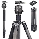 Carbon Fiber Tripod Monopod, 69.3'' Professional Compact Camera Tripod with 44mm Low Profile Ball Head, 10 Layer Carbon Fiber Leg Tubes Ultra Stable for DSLR Camera,Video Camcorder(AS70C)