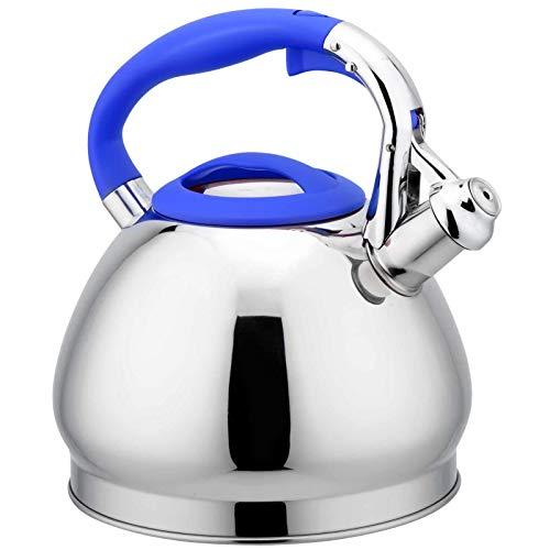 Bettying Tetera de acero inoxidable de 3 l, hervidor de agua, hervidor de agua, hervidor de agua para cocina