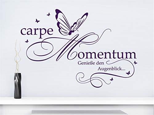 Wohnzimmer Wandtattoo Carpe Momentum Genieße den Augenblick Wohnzimmer Schlafzimmer Aufkleber