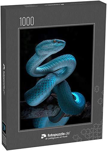 Puzzle 1000 Teile Schlange - Reptilien-Serie - Klassische Puzzle mit edler Motiv-Schachtel, Fotopuzzle-Kollektion 'Tiere'