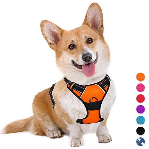 BARKBAY No Pull Dog Harness Large Step in Reflective Dog Harness with Front Clip and Easy Control Handle for Walking Training Running(Orange,M)