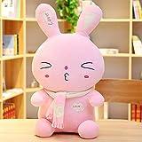 Gästehung Riesenkaninchen Plüschtier, niedliche rosa Kaninchen Ragdoll Kissen Kissen Puppe Kuschel Tröster Spielzeug Geschenk Spielzeug für Jungen und Mädchen Kleinkind 327 (Farbe: B, Größe: 35cm) hai