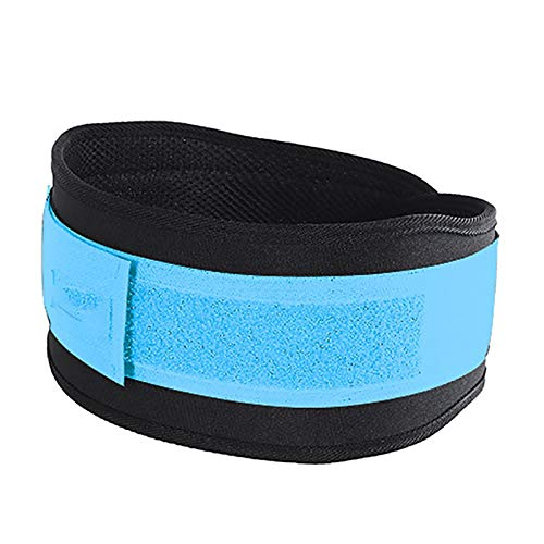 Weightlifting Squat Training Lumbar Support Band Nylon Powerlifting Belt Fitness Back Waist Protector For Men Woman Girdle (Color : Blue, Size : Large)