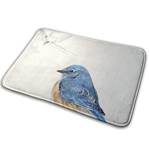 LAURE Universelle rutschfeste Fußmatten, Begrüßungsmatten für den Außen- und Innenbereich, rechteckige rutschfeste FußmattenBlau Blau Die Western Bluebird Sialia Mexicana Bird Box