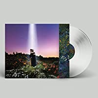 LETS JUST SAY THE WORLD ENDED A WEEK FROM NOW, WHAT WOULD YOU DO? (Crystal Clear Vinyl)