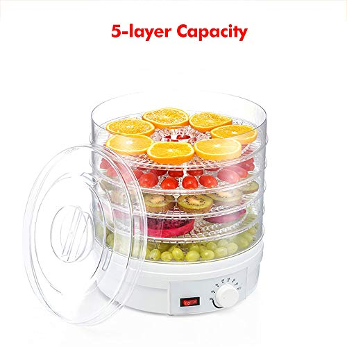 Buy NBCDY 350W 5-Layer Food Dehydrator, Countertop Portable Electric Fruit Dehydrator Drying Machine...