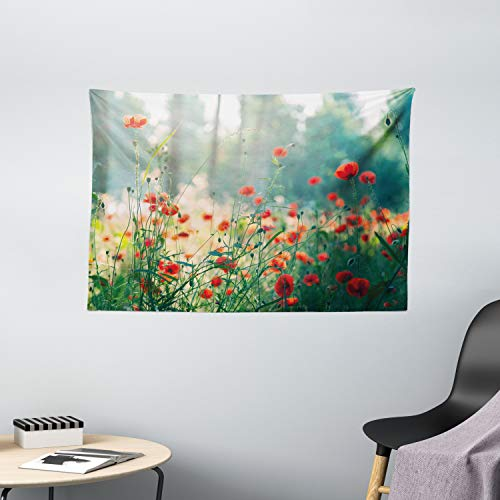 Ambesonne Nature Tapestry, Wild Red Poppy Flowers Field Summertime Sunbeams Gardening Bedding Plants, Wide Wall Hanging for Bedroom Living Room Dorm, 60' X 40', Yellow Green