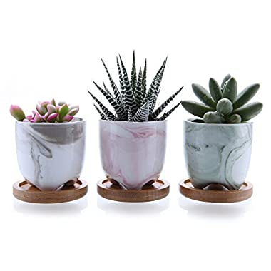 T4U 2.25  Ice Cream Serial Modern Sucuulent Cactus Plant Pots Flower Pots Planters Containers Window Boxes Full Colors with Bamboo Trays