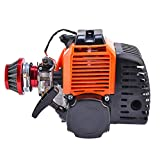 49cc 2 stroke Gas Scooter Engine With Racing Air Filter for ScooterX EVO Pep Boys Zoom Bicycle Motorized DIY