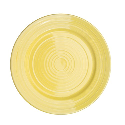 CAC China TG-9-SFL Tango Sunflower Porcelain Round Plate, 9-7/8 by 9-7/8 by 1-1/4-Inch, 24-Pack