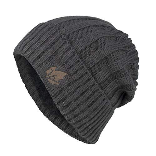 PLOT Unisex Strickmützen Damen Herren Wintermütze Gefüttert Streetwear Hip-Hop Mützen Beanie Mützen Winter Warme Einfarbig Feinstrick Hüte