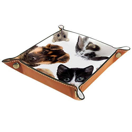 Leder Valet Tray, Würfel Tray Folding Square Holder, Kommode Organizer Platte für Change Coin Key Adorable Animal