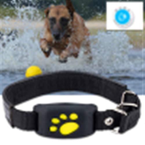 Pet Hair Dryer Valla por Cable Recargable Mascota Seguridad Perro Mascota Perro GPS del Collar Gatos Perros Collares Tracker GPS USB Impermeable (Color : Black)