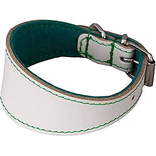 Arppe 195464535152 Collar Galgo o Cuero Fieltro Orinoco, Blanco y Verde