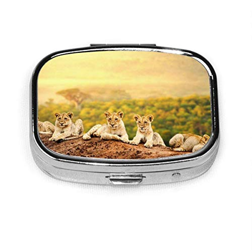 GRTING Wild Lions Pill Case 2 Compartment Medicine Case Portable Travel Square Pill Box Organizer for Pocket Purse Daily Needs