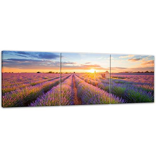 Wandbild Lavendelfeld in Südfrankreich - Bild auf Leinwand - 120x40 cm quer mehrteilig Leinwandbilder Landschaften blühende Felder Provence Lila