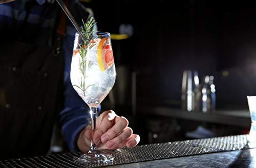 Gin Salvador - Premium Dry Gin aus Bayern - Small Batch Gin mit 9 verschiedenen Botanicals - Regional und in Handarbeit - 43% - 500ml - 6