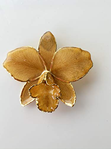 Natural Cattleya Orchid Pendant Necklace