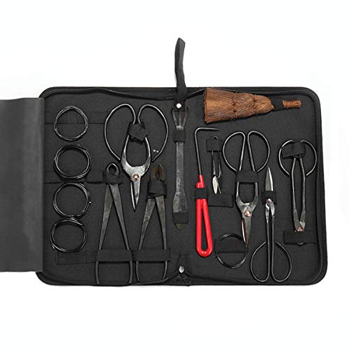Bonsai Pruning Tool Kit 15 PCS, Carbon Steel Plant Tree Pruning Scissors, Bonsai Scissors with Rake and Training Wire for Bud & Leaves Trim for Indoor Beginner