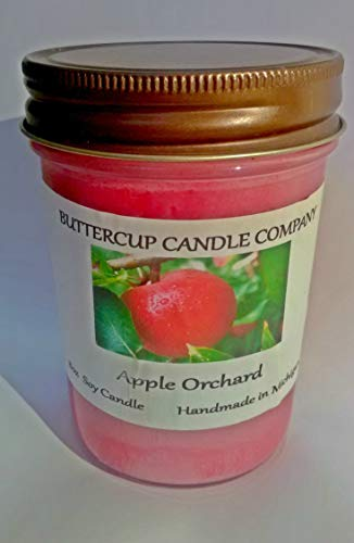 Handmade Strongly Scented APPLE ORCHARD 8 Ounce Soy Container Candle Buttercup Candle Company