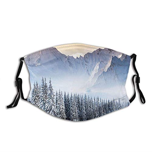 Fillter Cloth for Unisex,Fantastic Landscape Photography with Snowy Mountains Pine Trees Foggy Weather Print,Reusable Windproof Cloth Half Face Double Protection