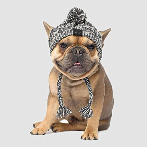 PQIQP Wintermütze für Hunde, flauschig, gestrickt, warm, mit langem Zopf, Zubehör für Welpen, Größe M