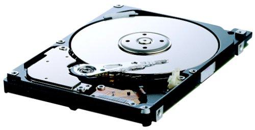 Samsung SP0802N 80 GB 7.200 rpm U-ATA/133 2MB Cache interne Festplatte IDE Bulk
