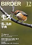BIRDER(バーダー)2019年12月号 「田園の殺し屋」の真実 モズ/鳥の名前 字典