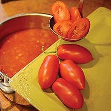 Potseed Samen Keimung: 50 - Seeds: OROMA Tomatensamen - perfekt für die Herstellung Thick Tomatenmark und Sauce. !!!!
