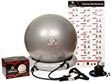 Scale It Up 65cm Exercise Ball Chair w/ 15LB Resistance Bands - Stability, Fitness, Pilates and Yoga Ball -...