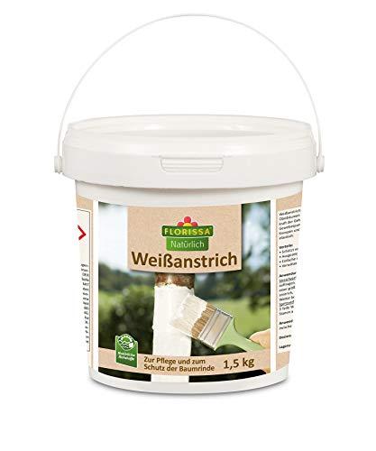 Florissa Natürlich 1,5 kg Weißanstrich: Natürlicher Rindenschutz zum Weißen und Pflegen von Bäumen und Sträuchern