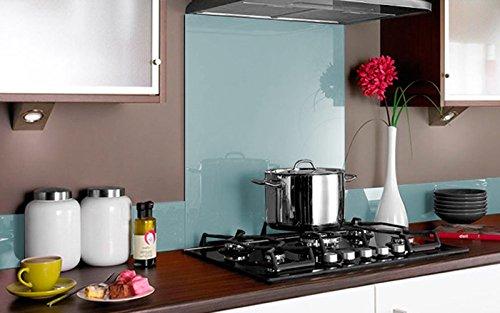 Vidriopanel Panel DE Vidrio para Cocina en Diferentes Medidas y Colores/Cristal de Protección Salpicaduras para frentes de cocinas (60x55 cm, Agua Marina)