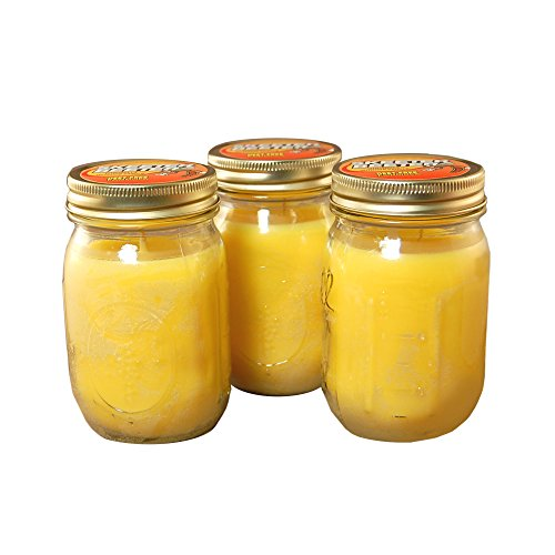 Lumabase 26603 3 Count Citronella Scented Candles in Mason Jar, 12 oz, Yellow