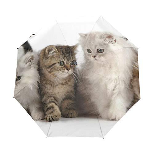 FANTAZIO Fantasio 3-Fach Faltbarer Reise-Regenschirm mit Katzenmotiv, leicht