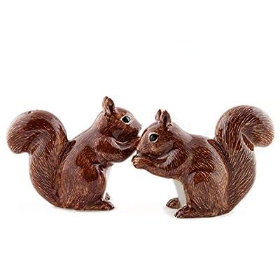 Quail Ceramics - Red Squirrel Salt And Pepper Pots from Quail Ceramics