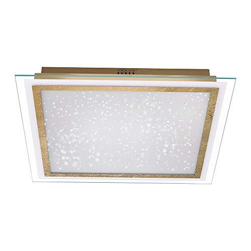 LED Deckenleuchte Paul Neuhaus Foil 8389-12 Sternenhimmel Dimmbar
