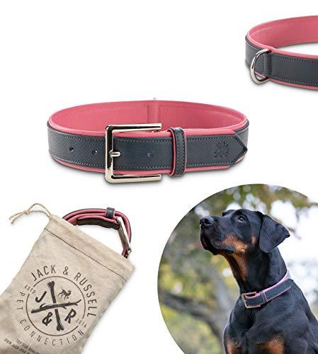 Jack & Russell Premium Leder Hunde Halsband Lilly - Lederhalsband Kalbleder - Hundehalsband Echtleder Lilly (S, Blau/Pink)