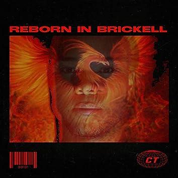 Reborn in Brickell