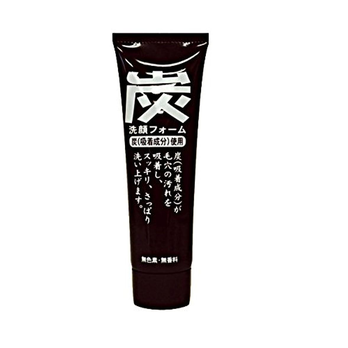 ディスカウントパフ不安定な純ケミファ 炭 ジュンラブ MC洗顔フォーム 120g