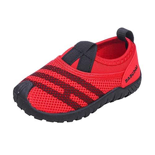 Berimaterry Zapatos Lona Bebé Zapatillas Bebe Primeros Pasos para Bebes Recien Nacidos...