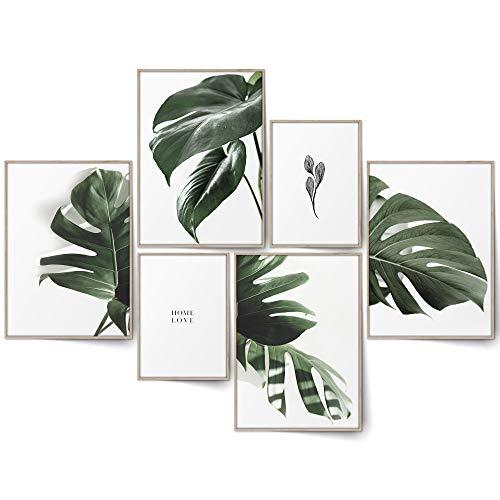 BLCKART Infinity Monstera Poster Set Stilvolle Beidseitige Pflanzen Bilder Grün Tropisch Wohnzimmer Deko (L | 4X A3 | 2X A4 | ohne Rahmen, Monstera)