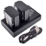DSTE Replacement for 2X NP-FZ100 + Dual LCD Battery Charger Compatible Sony a6600 Alpha 9 A9 A9S Alpha 9R A9R A7II A7RIII ILCE-7RM3 VG-C3EM Grip with Type-C and Micro-USB Port as NPA-MQZ1K BC-QZ1