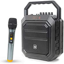 Deco Gear Portable Wireless PA Speaker System with Wireless Microphone - 30W Power and Rechargeable 4000 mAh Battery - Built in Equalizer, Radio, Aux and USB Ports - Carrying Strap (One Speaker)