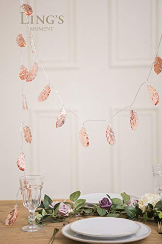 Lings moment Rose Gold Feather Copper Metal 5Ft 10 LED Lantern String Lights for Party Decorations Rose Gold Bedroom Decor Fairy Lights Bohemian Decorations Wall Decor Bridal Shower Patio Lighting
