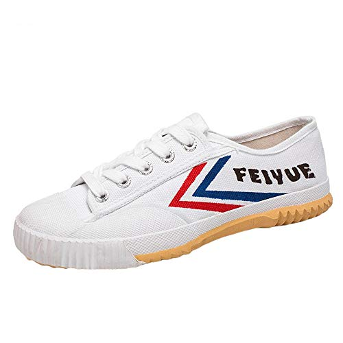 Willsky Zapatos De Artes Marciales, Tai-Chi Zapatillas De Deporte De Los Adultos Clásico Kung Fu Zapatos De Lona Antideslizante Moda Qigong Formadores,Blanco,44