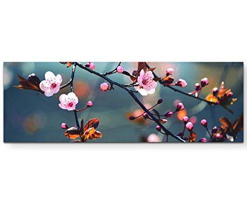 Eau Zone Wandbild auf Leinwand 120x40cm Zweig Einer japanischen Kirsche