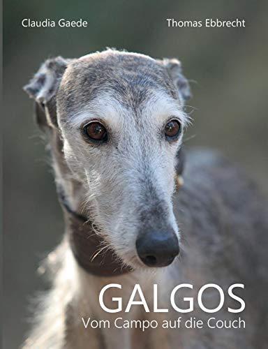 Galgos: Vom Campo auf die Couch