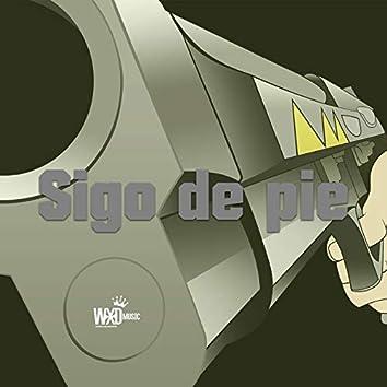 Sigo de Pie
